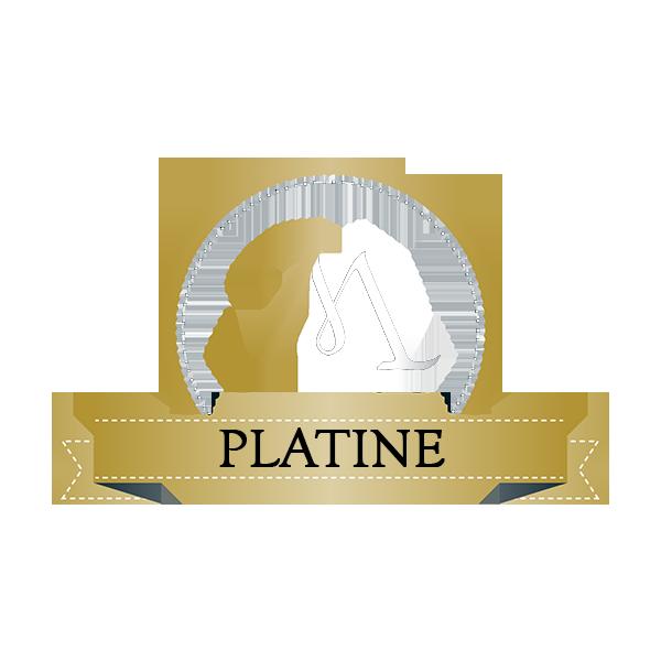 Coaching PLATINE